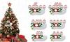 Quarantine Family 2020 Christmas Ornament Personalized Xmas Gifts
