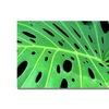Kathie McCurdy Tropical Leaf Canvas Print