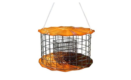 Erva SUET1C Double Suet Cake Feeder - Copper Tint Finish (Goods For The Home Patio & Garden Bird Feeders & Food) photo
