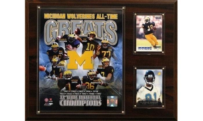 Fan Creations NCAA Michigan Wolverines 12 Mini Roadmap State Sign