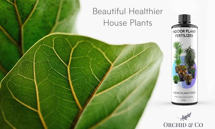 Up To 33% Off on Indoor Plant Fertilizer Liqui    | Groupon Goods