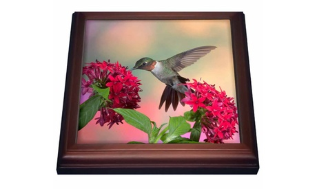 Trivet with Tile Rubythroated Hummingbird on Red Pentas. Marion Illinois USA. photo