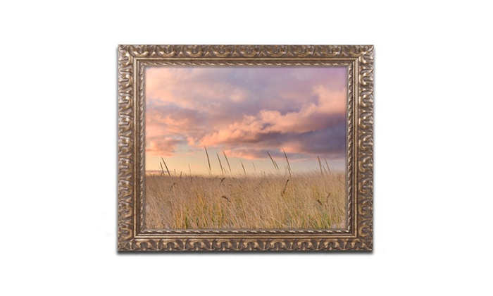 Groupon Goods: Michael Blanchette Photography 'Beachgrass Sunrise' Ornate Framed Art