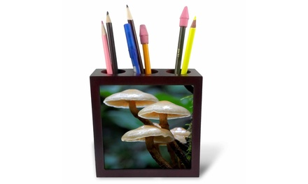 Tile Pen Holder - Canada, Vancouver. Small brown mushrooms - 5-inches