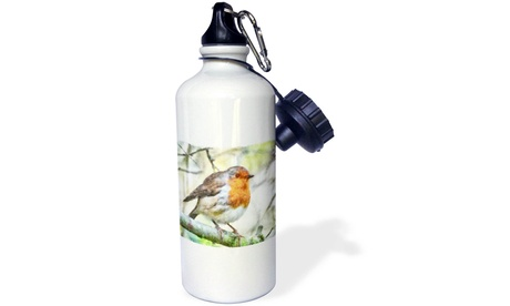 Water Bottle Christmas Robin Redbreast Winter Watercolor (Goods Sports & Outdoors Exercise & Fitness Cardio Training Cardio Accessories) photo