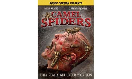 Camel Spiders 87dab2be-354e-4c39-901f-7abd1cc7d1cf