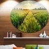 Green Wheat Field at Sunset' Landscape Photography Circle Metal Wall Art