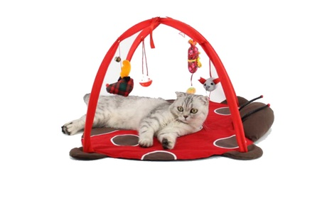 Activity Playing Bed Toys Cat Bed Pad Blanket House Cat Tent f01b1073-2469-4727-9671-d97ceafaac22