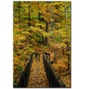 Kurt Shaffer Fall Bridge Canvas Print