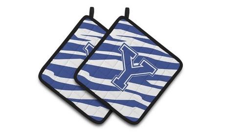 Carolines Treasures CJ1034-YPTHD Monogram Initial Y Tiger Stripe Blue & White Pa photo
