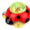 Mother Nature Ladybug Battery Operated Kid's Bump and Go Toy
