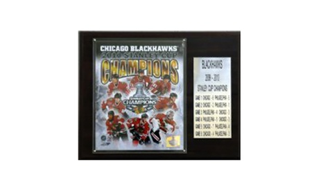 "NHL 12""x15"" Chicago Blackhawks 2010 Stanley Cup Champions Plaque 15a3275e-fecd-4bf8-9430-4fd38dbec321"
