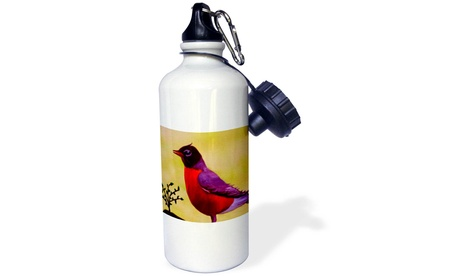 Water Bottle - Robin Redbreast - 21oz (Goods Sports & Outdoors Exercise & Fitness Cardio Training Cardio Accessories) photo