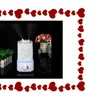 Aromatherapy Humidifier Air Essential Oil Special For Valentine Day