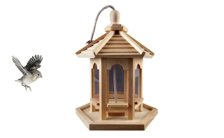 Excellent Bird Feeder Hanging Cord Attached (Goods For The Home Patio & Garden Bird Feeders & Food) photo