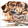 Best Buddies Cat & Dog Metal Wall Art 28x12