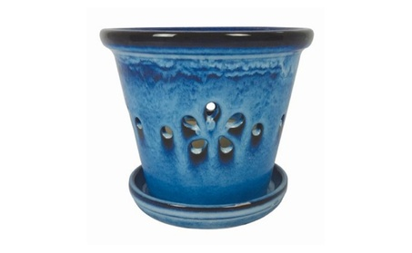 Border Concepts 44238 5.5 in. Daisy Orchid Pot Pack of 6 e825fe67-bab0-4528-9699-2907315778c6