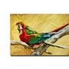 Lois Bryan 'Kissing Macaws' Canvas Art