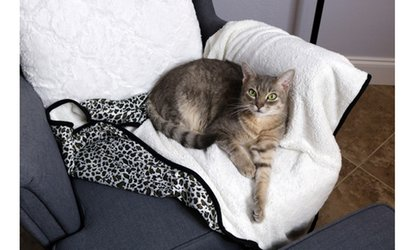 Waloo Reversible Blanket For Dogs And Cats
