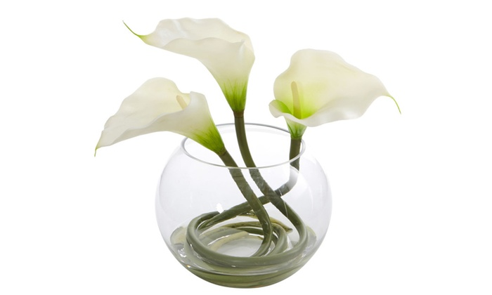 Up To 49 Off On 6 Inch Wide White Lily Flowe Groupon Goods