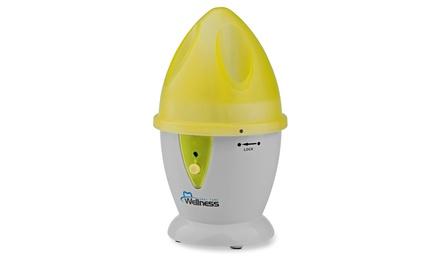 Wellness WEFC5Y Countertop Wireless Toothbrush UV Sanitizer