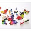 Lifelike Butterfly 3D wall decals/stickers, indoor/outdoor (set of 12)