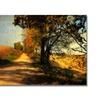 Lois Bryan Follow Your Road Canvas Print