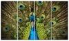 Grand Peacock Animal Photography Metal Wall Art 48x28 4 Panels