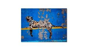 Groupon Goods: Banksy 'Bronx Zoo' Canvas Art