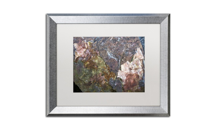 Kurt Shaffer \'Natural Abstract\' Silver Framed Art | Groupon