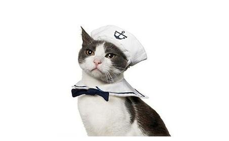Pet Collar Dog Hat Navy Suit Pet Dog Accessories c0e6a602-0ca3-44d0-8f61-c1e89a0007f2