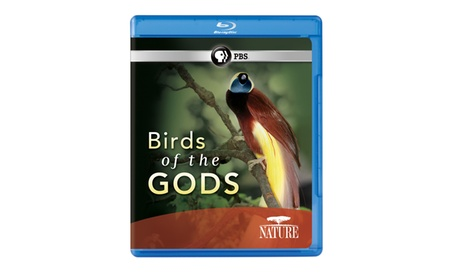 NATURE: Birds of the Gods Blu-ray fadcdff8-ddef-4118-915c-16ea0be5d546