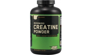 Optimum Nutrition Unflavored Micronized Creatine Powder