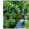 Rainforest (Waterfall) Art Poster Print