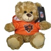 NFL 9 inch Rally Men Hoodie Bear