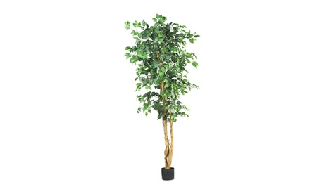 "Nearly Natural Artificial Plants 6"" Ficus Silk Tree Green abe1c478-2edc-4432-8fe4-65a4d0b9ebbb"