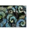 Kurt Shaffer Escargot Begonia Canvas Print