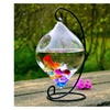 Transparent Fish bowl both Fishbowl and Vases for Home decoration