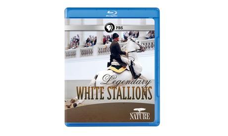 NATURE: Legendary White Stallions Blu-ray 8b17365a-4122-431f-b7ee-a3e2338573f1