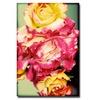 Ariane Moshayedi Rustic Roses Canvas Print