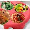 Meal Measure 1 Portion Control Plate Manage Weight Loss Diet Plan