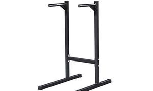 Dip Stand Parallel Bar Station Workout Muscle Triceps Sweat Home Gym