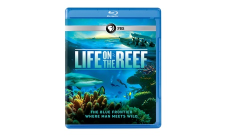 Life on the Reef Blu-ray ca8e5413-22e9-41f9-95aa-a169e6b631a1