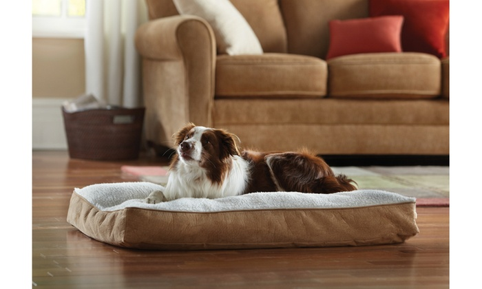 Animal Planet Sherpa Memory Foam Pet Bed Livingsocial