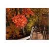 Kurt Shaffer Brilliant Autumn Stairway Canvas Print