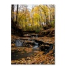 Kurt Shaffer Lakeview Autumn Falls 3 Canvas Print
