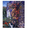 David Lloyd Glover Magnificent Climbing Roses Canvas Print