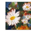 Sheila Golden Daisy Splash Canvas Print 24 x 24