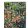 Paul Cezanne In the Park of Chateau Noir Canvas Print
