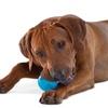 Dogs Treat Dispenser Ball